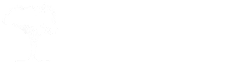 De Ginkel